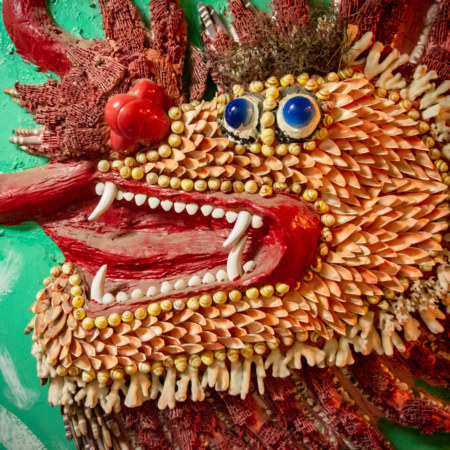 Ugly Shell Dragon