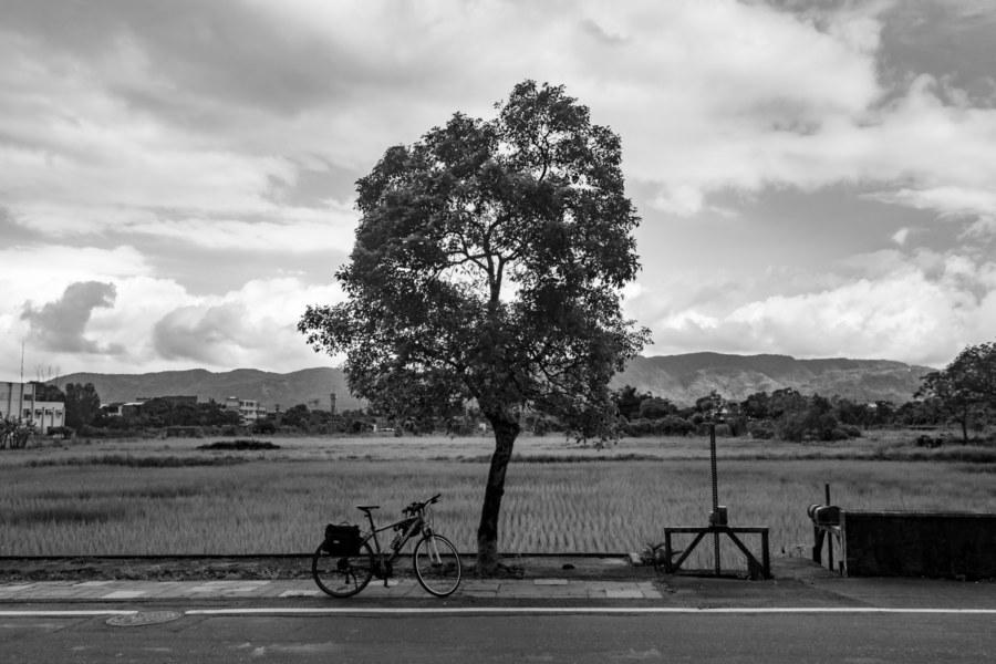 Shoufeng Vista