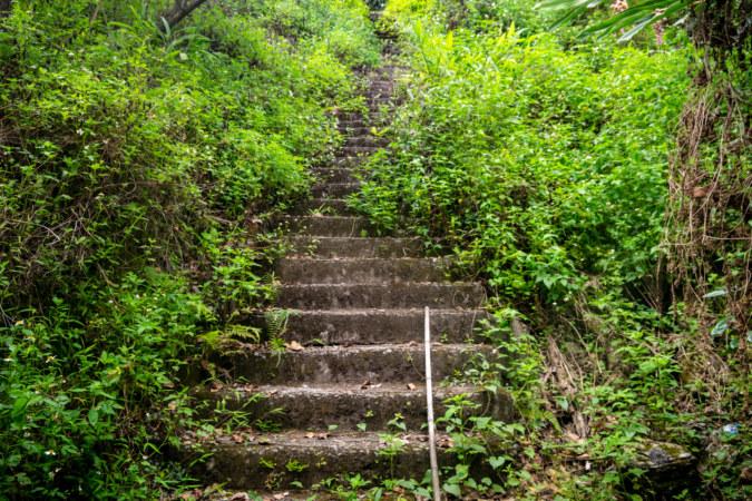 Visiting Path at the Former Bazi Shinto Shrine