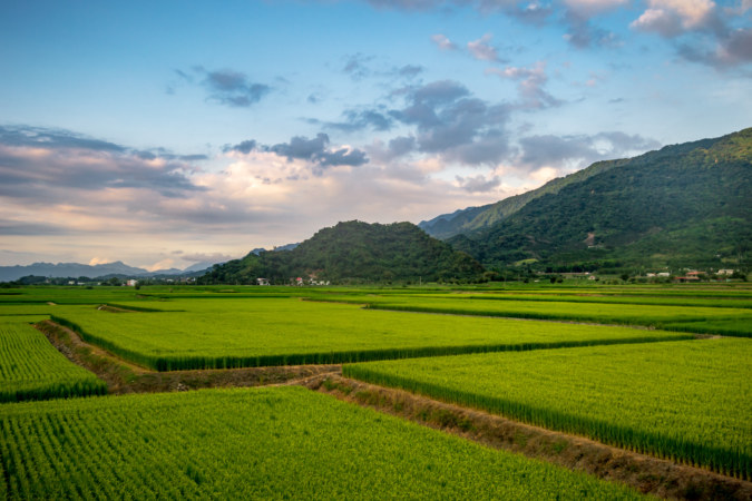 Dusky Skies Over Scenic Huadong Valley Rice Paddies