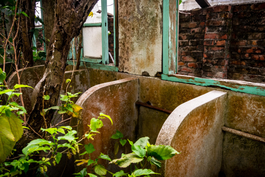 Jincheng Theater Overgrown Bathroom