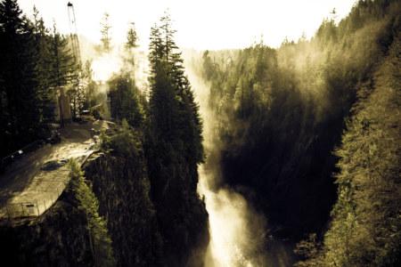 Misty Capilano Canyon