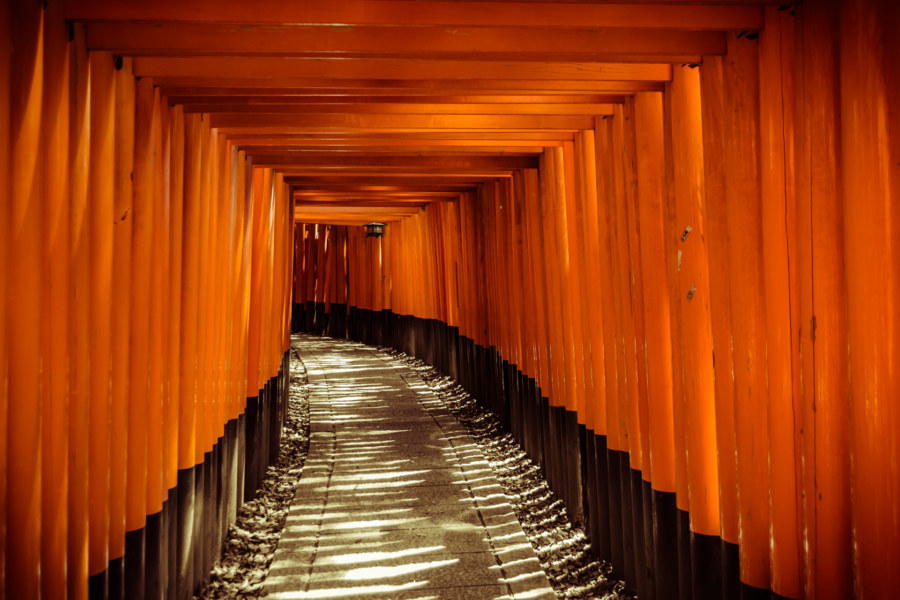 Thousands of torii at Fushimi Inari Taisha