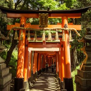 The beautiful gates of Fushimi Inari Taisha