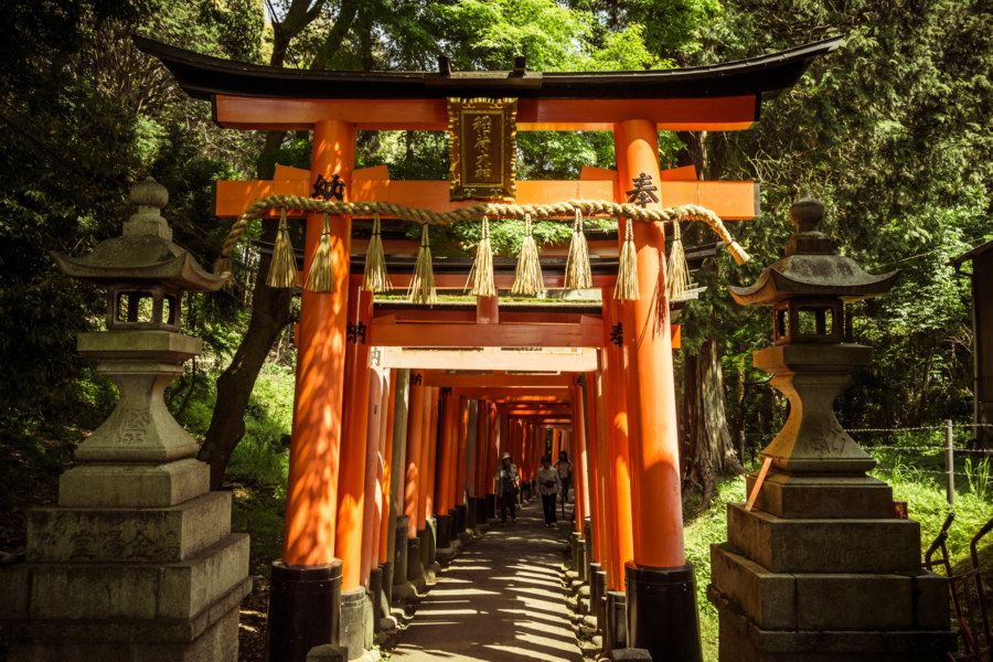 The beautiful gates of Fushimi Inari Taisha