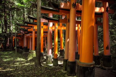 Deep in the woods at Fushimi Inari Taisha