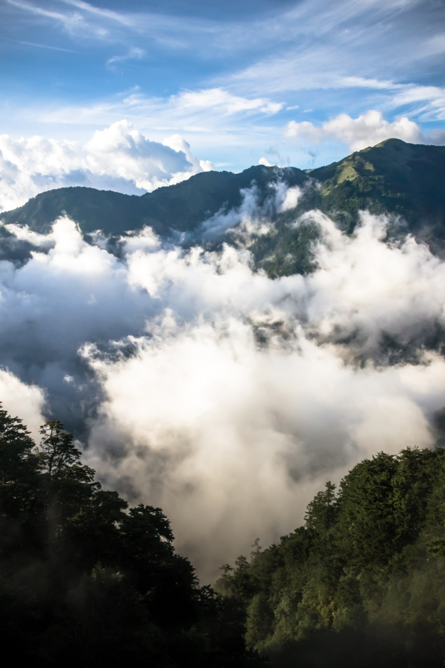 High above the clouds in the central mountain range of Taiwan