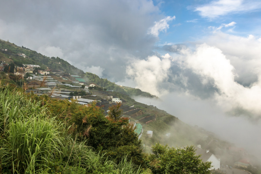 Mountainside farms in Nantou County