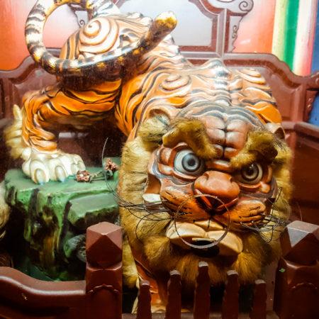 Grandpa Tiger at Yuqu Temple