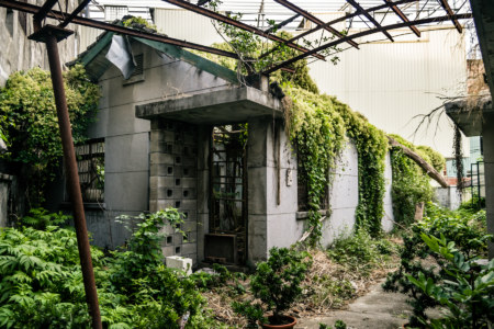 Nature claims the outbuildings of an office in Xizhou