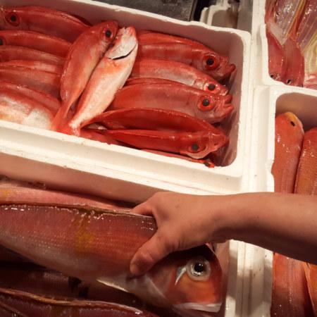 Testing for freshness at Kanziding Fish Market