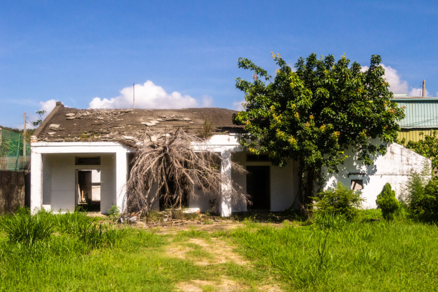 Abandoned and overgrown in Manzhou