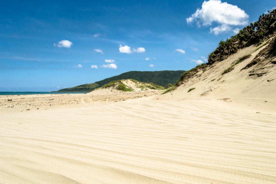 Sandy shores of Bayao Bay