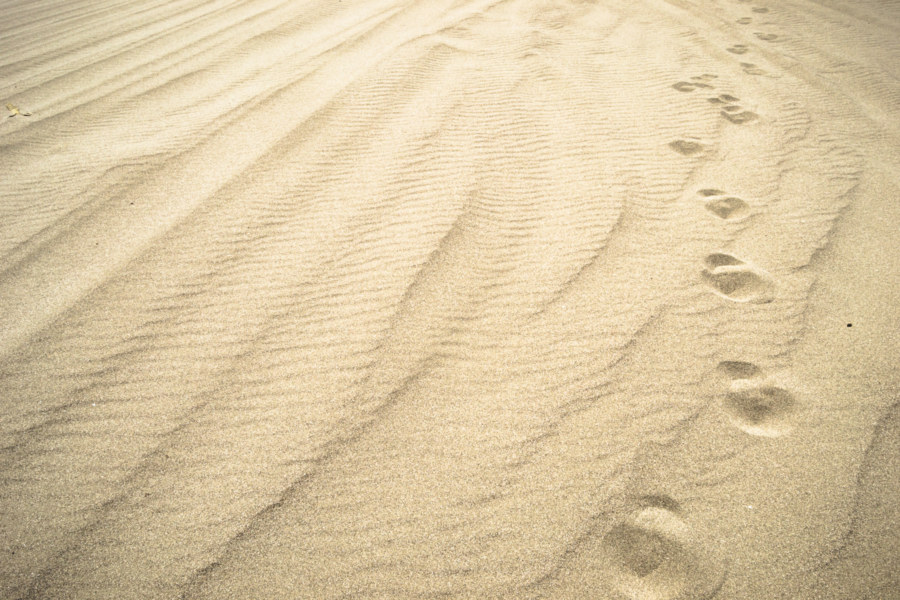 A mile in my footsteps