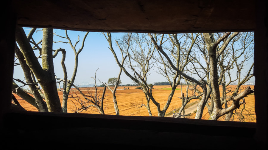 Looking out from an abandoned gun tower