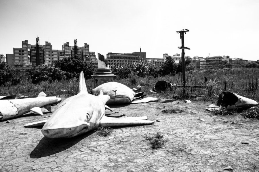 Taichung Shark Cemetery in black and white