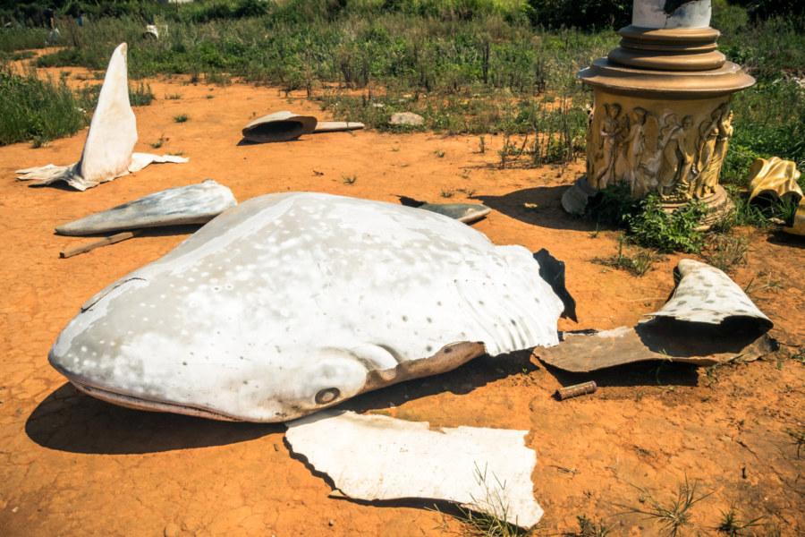 Shattered sharks on the orange soil of Dadushan