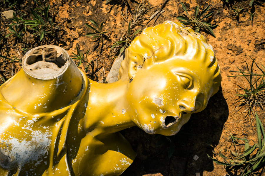 Yellow fairy at the shark cemetery