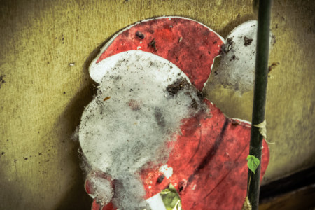 Christmas decorations abandoned to the ravages of time