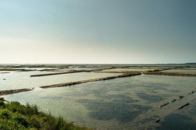 Overlooking the fan-shaped salt field