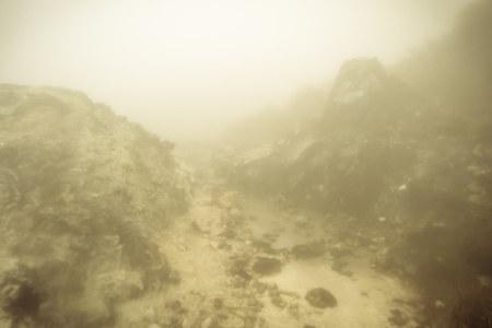 Fumaroles and fog on Yangmingshan