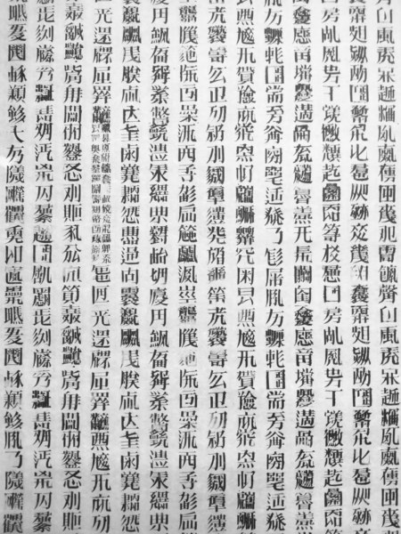 Detail of A Book From The Sky 天書