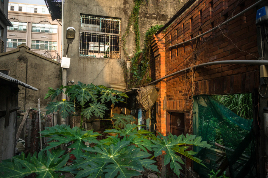 A rare old house in Zhongli