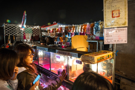 A modest pet shop at Douliu Renwen Park Night Market