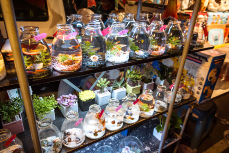 Unusual offerings at Douliu Renwen Park Night Market