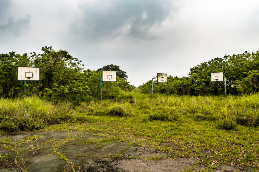 Overgrown Basketball Courts